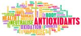 Οξειδωτικό Στρες: Ο ρόλος της αντιοξειδωτικής δίαιτας στην αντιμετώπισή του
