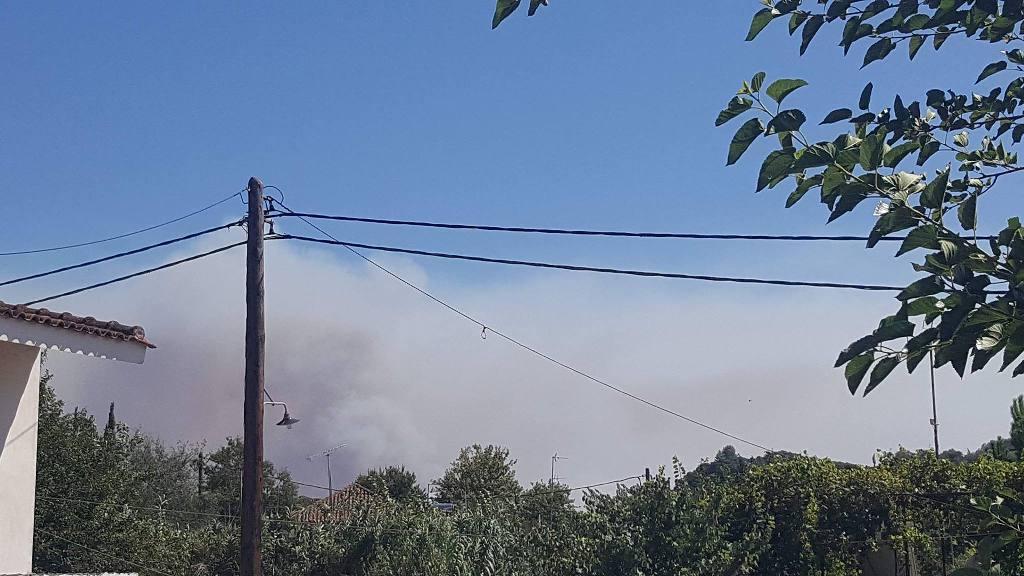 Καίγεται η Ηλεία – 4 πυρκαγιές σε διαφορετικά σημεία