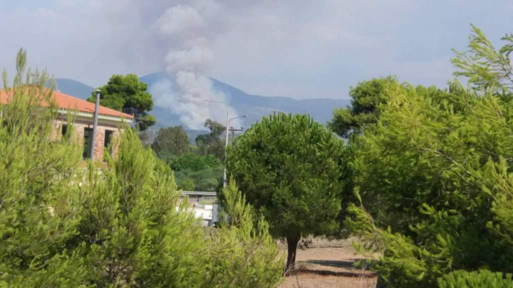Μεγάλη φωτιά στα Ροδινά Ηλείας – Επιχειρούν έξι πυροσβεστικά αεροπλάνα