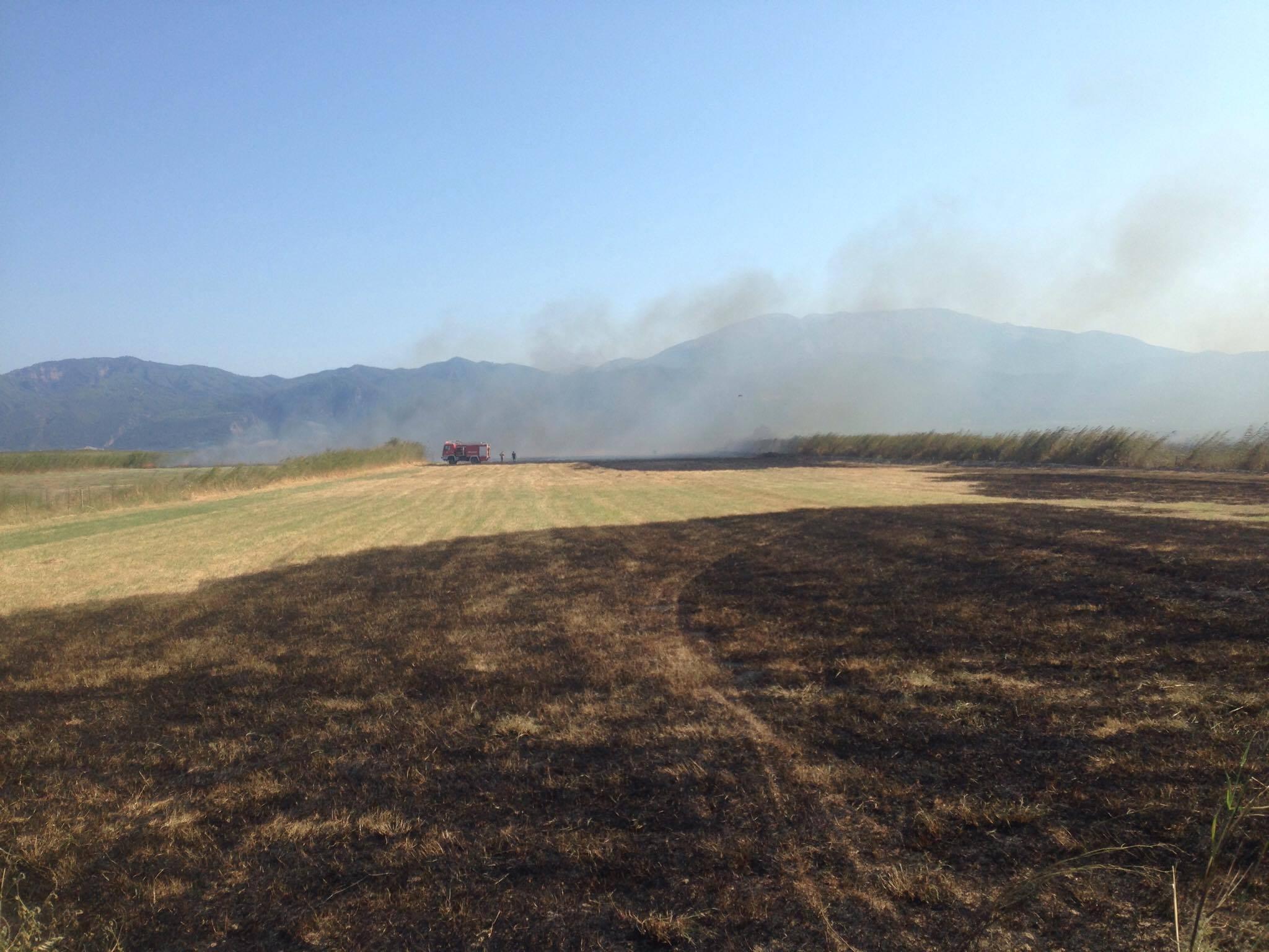 Πυρκαγιά στα Μαλάματα Δωρίδας